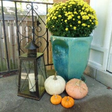 A planter with flowers and pumpkins on a porch
