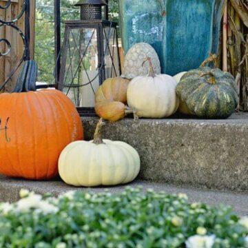 Pumpkins on a front porch