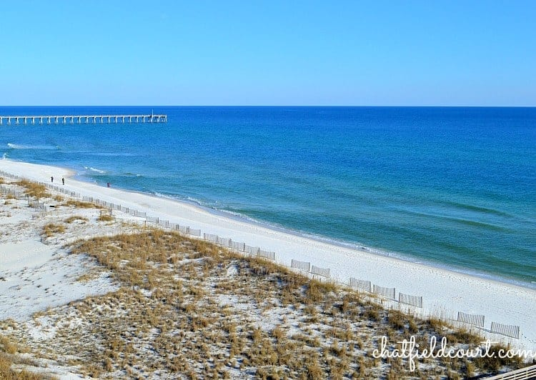 Sunny Florida | chatfieldcourt.com