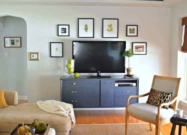 nature inspired pictures that make a tv gallery wall with a blue console