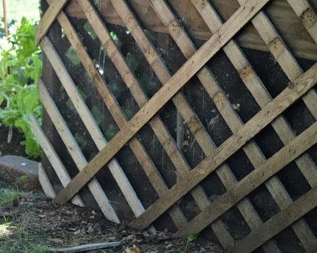 new wood on deck lattice