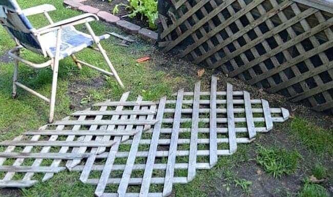 found lattice panels on the ground
