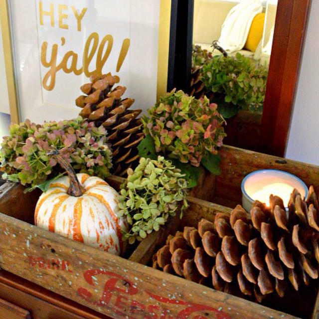 Fall home tour #ontheblog today. Are you ready for Fall yet? #linkinprofile #chatfieldcourt #fall #falldecor