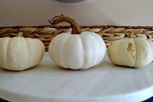 Mini Pumpkins Get Makeovers | chatfieldcourt.com