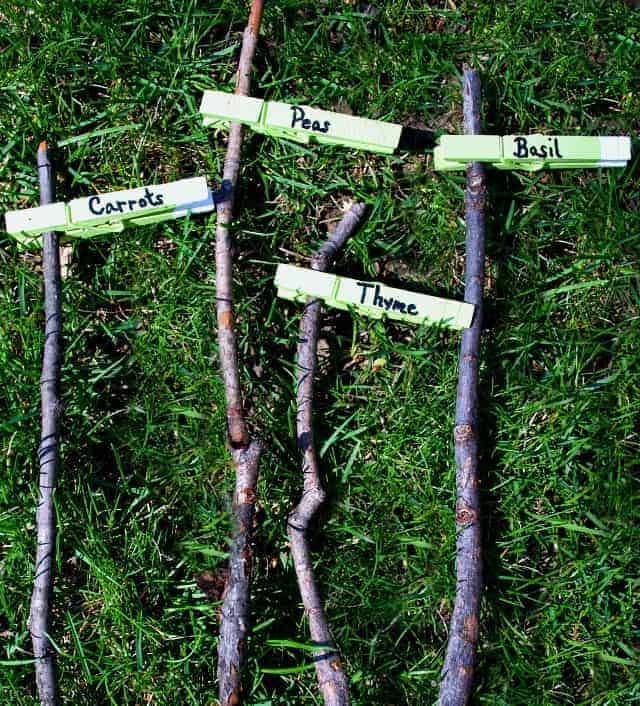 4 clothes pins on sticks used as garden markers