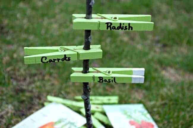 stick with 3 painted clothes pins on it used as garden markers