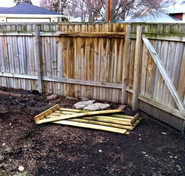 Cleaning a Moldy Wooden Fence | chatfieldcourt.com