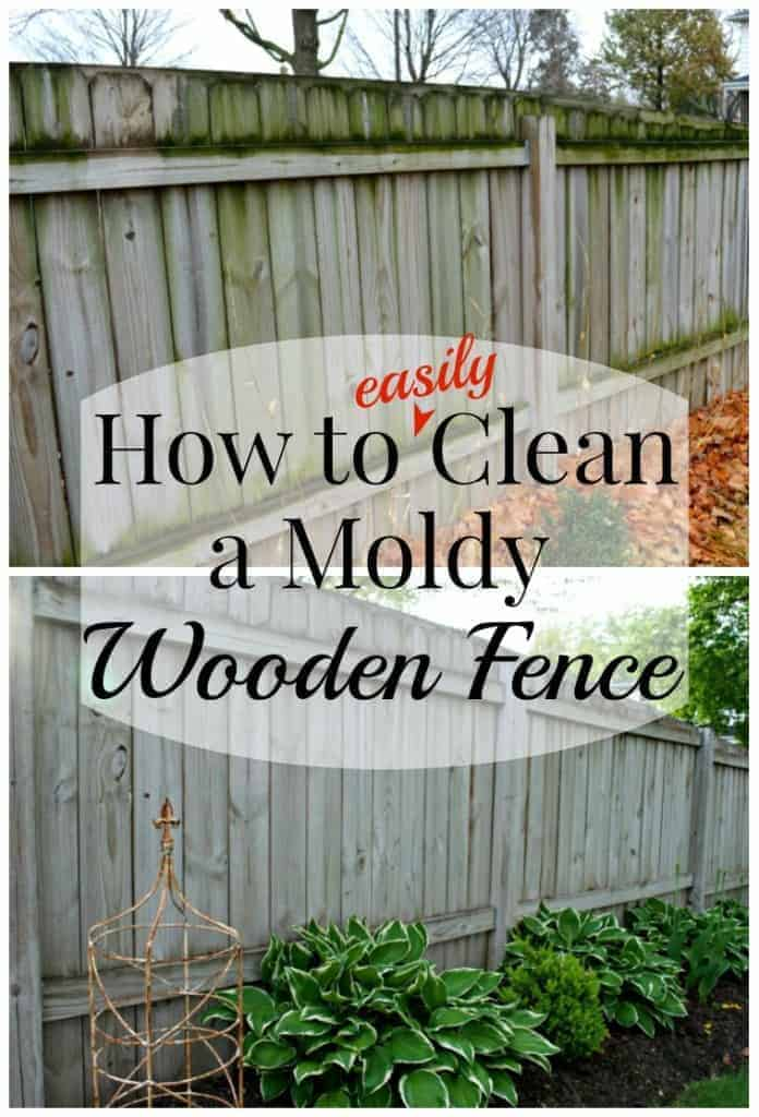 How To Clean A Moldy Wooden Fence Chatfield Court