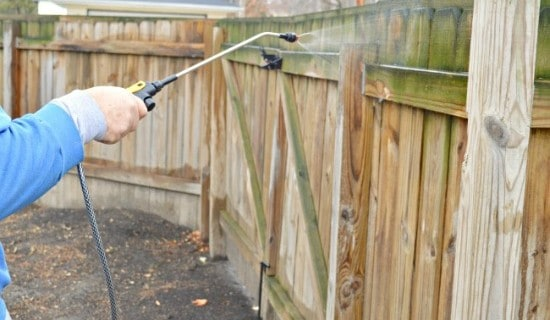 cleaning a wooden fence thumb