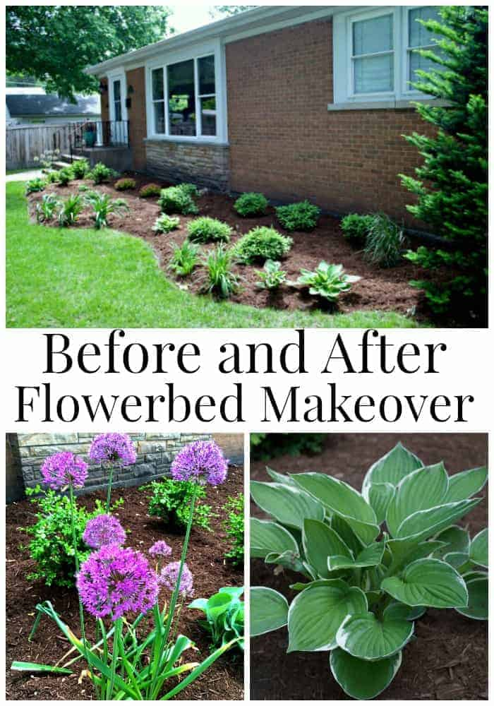 Before and After Flowerbed Makeover | chatfieldcourt.com