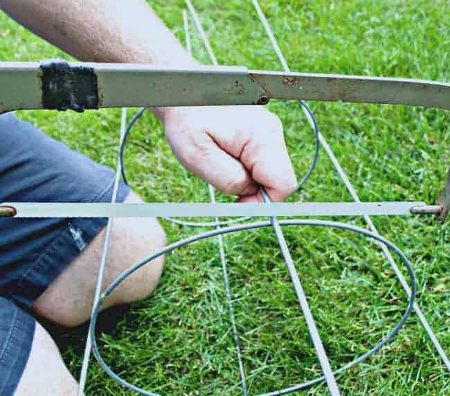 Tomato Cage Plant Stand | chatfieldcourt.com