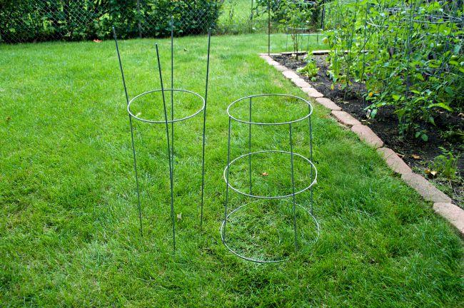 Tomato Cage Plant Stand | www.chatfieldcourt.com