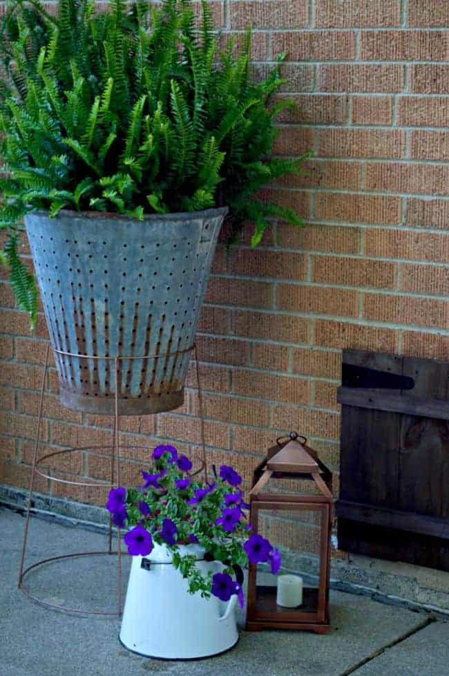 A quick and easy DIY. Make a cool plant stand from an old tomato cage and spray paint.