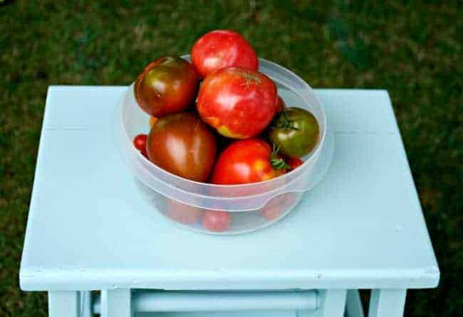 Fresh garden tomatoes and a robin's egg blue stool. | chatfieldcourt.com