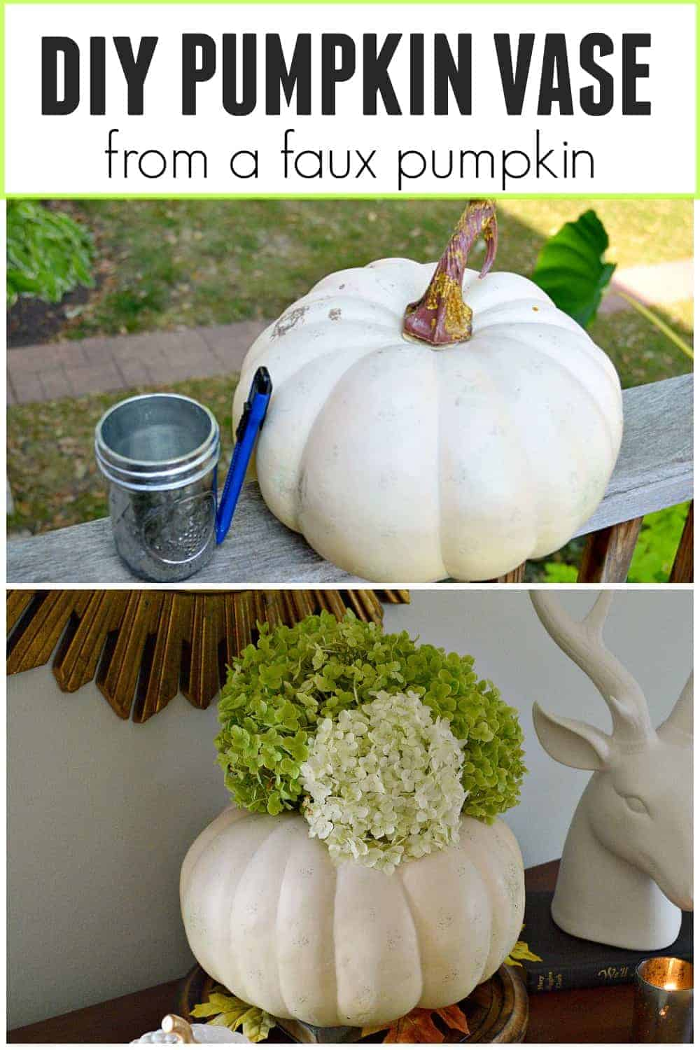 collage with faux pumpkin and faux pumpkin vase, plus a large graphic