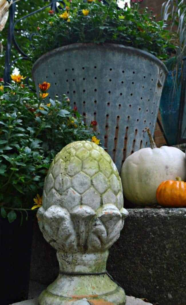 Decorating a small porch for fall with flowers, an olive bucket and lots of pumpkins. chatfieldcourt.com