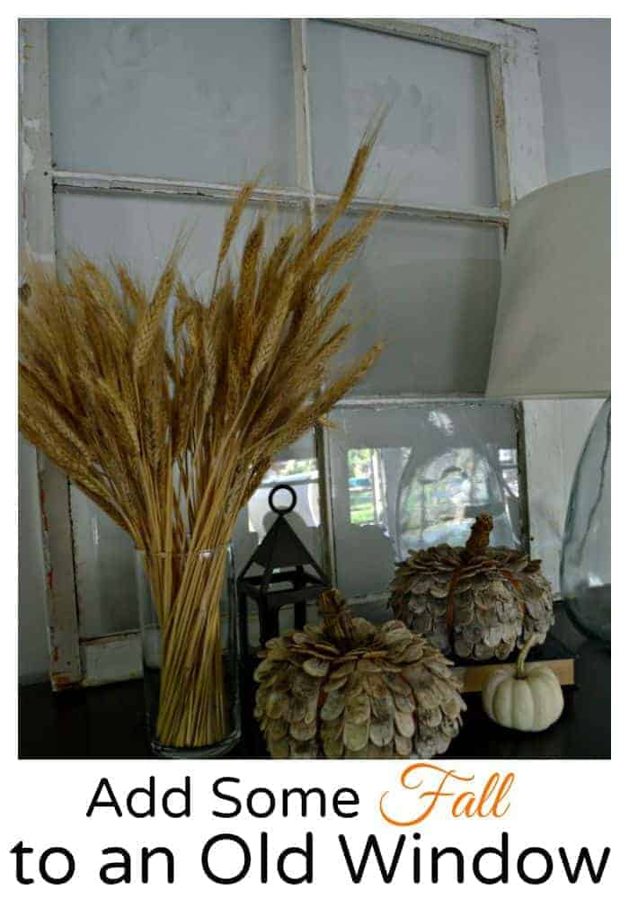 Add Some Fall to an Old Window | chatfieldcourt.com