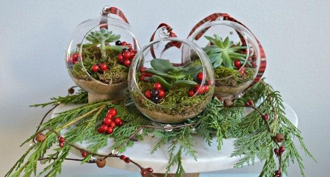 DIY Succulent Christmas Ornaments