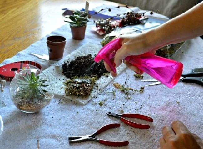 DIY Christmas ornaments spritzing sheet moss| chafieldcourt.com