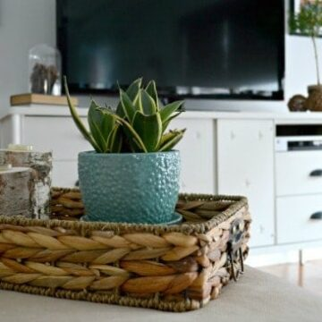 A living room filled with furniture and a potted plant on a tray