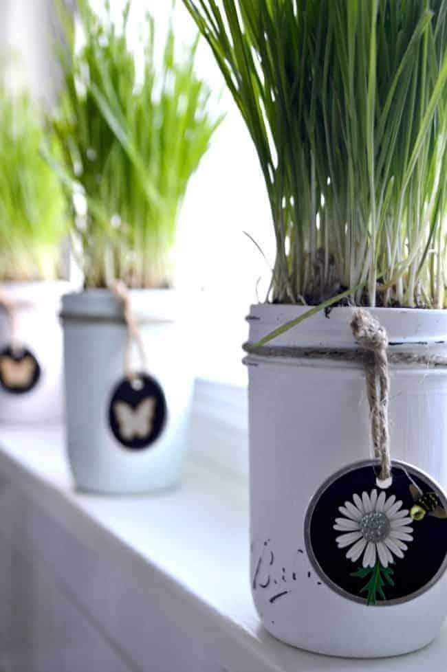 An easy DIY making spring mason jars using chalk paints, wheat grass and handmade tags. | chatfieldcourt.com