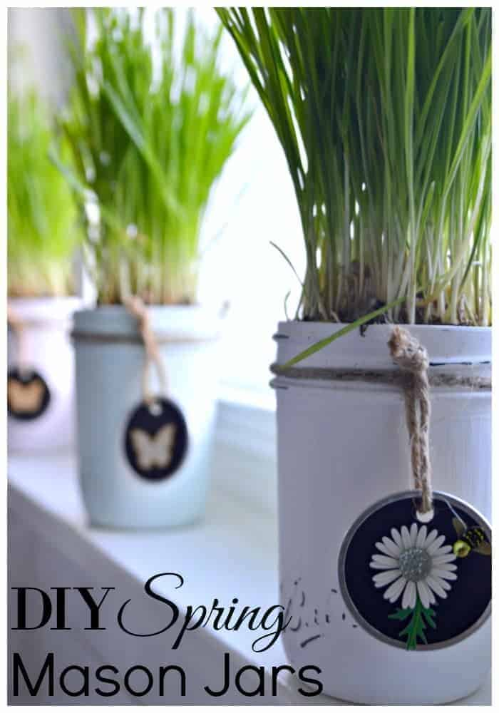 DIY chalk painted mason jars turned spring planter for your kitchen window | Chatfield Court