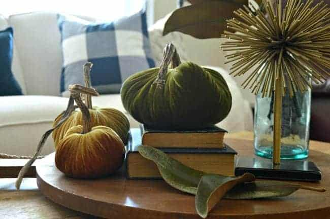 Pretty velvet pumpkins and other natural fall touches for a Seasonal Harvest Tour.