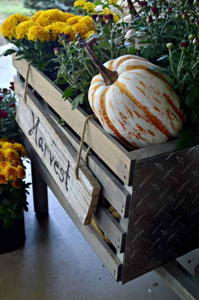 An easy to follow tutorial for a cool, rustic wheelbarrow all dressed up for fall.