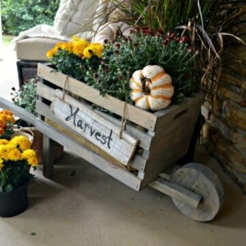 A close up of a fall wheelbarrow