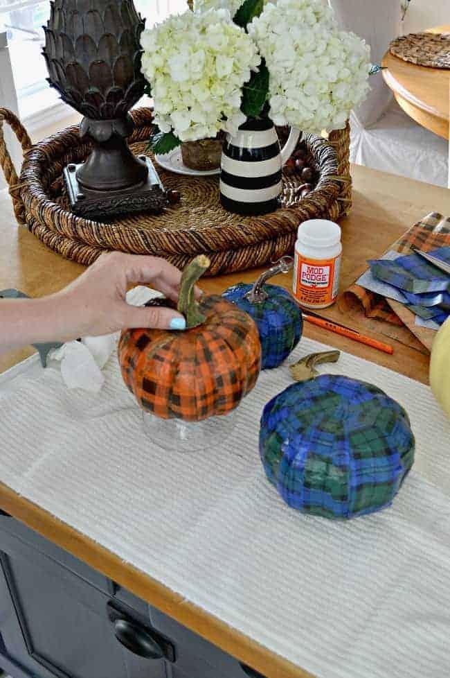 A cheap and easy DIY using a Dollar Store pumpkin and plaid tissue paper. chatfieldcourt.com