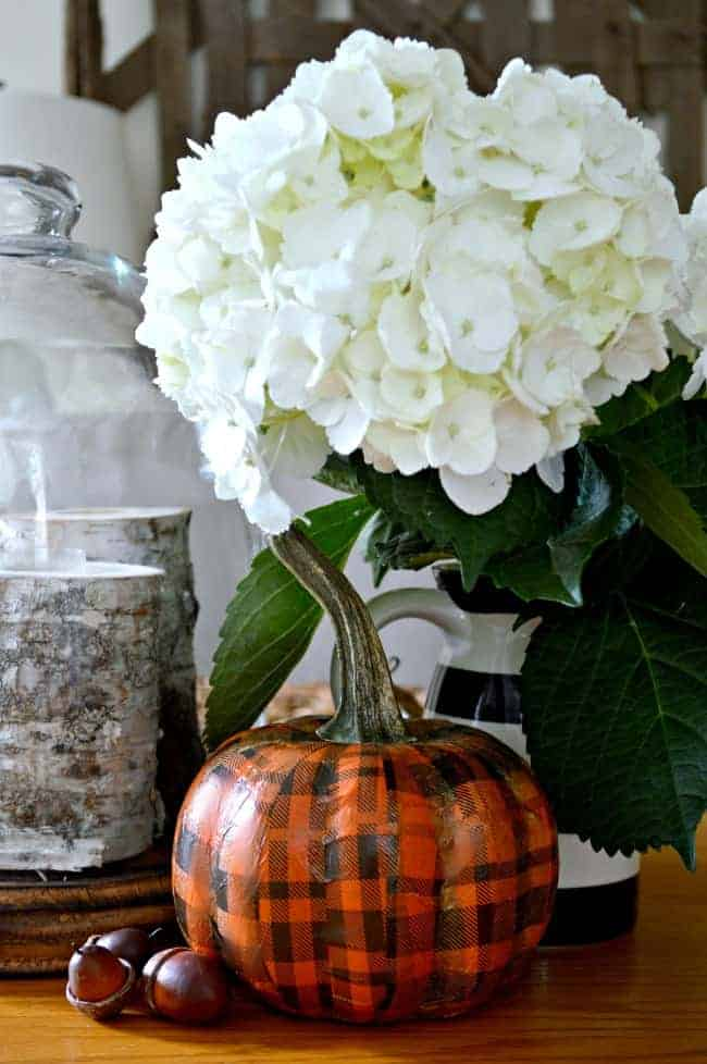 A quick and easy DIY using a Dollar Store pumpkin and pretty plaid tissue paper. chatfieldcourt.com