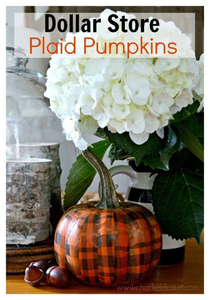 orange plaid Dollar Store pumpkin with faux acorns and black and white vase with white hydrangeas