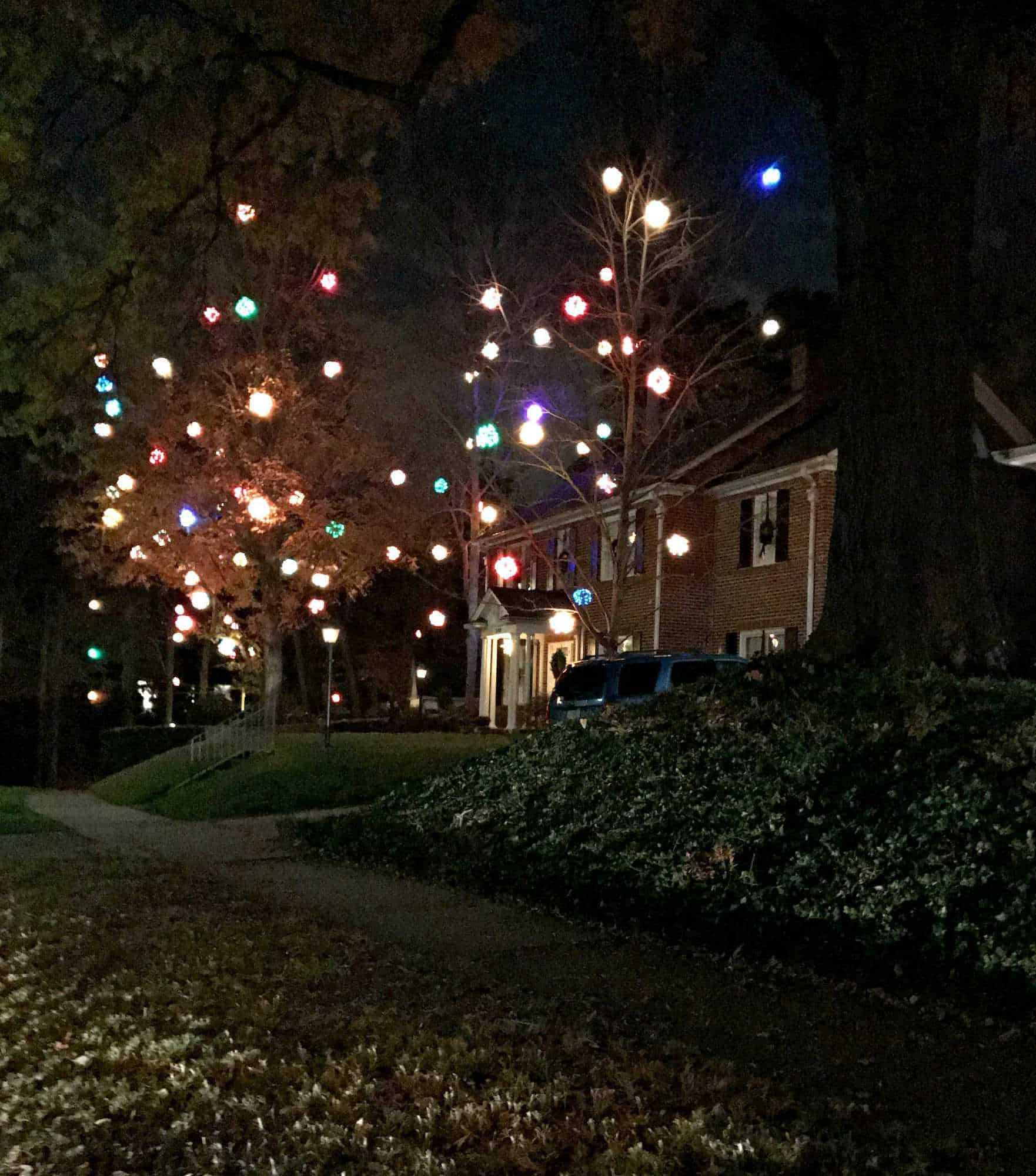 dozens of DIY lighted Christmas balls hanging in trees