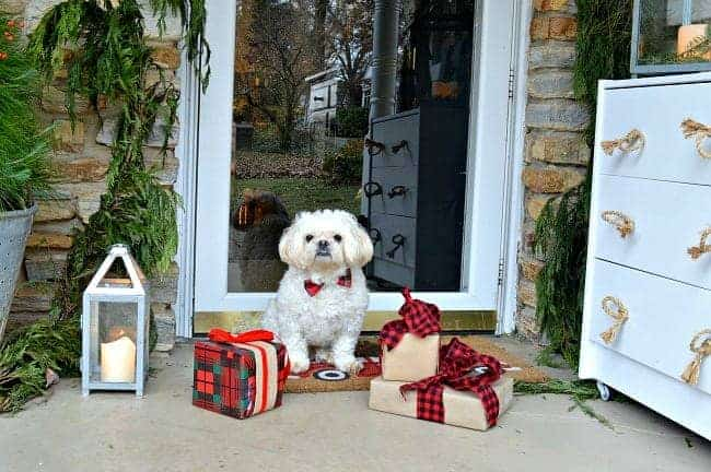 Decorating ideas for a cozy Christmas porch using a cute dog, fresh garland, lanterns and a few rustic touches. www.chatfieldcourt.com