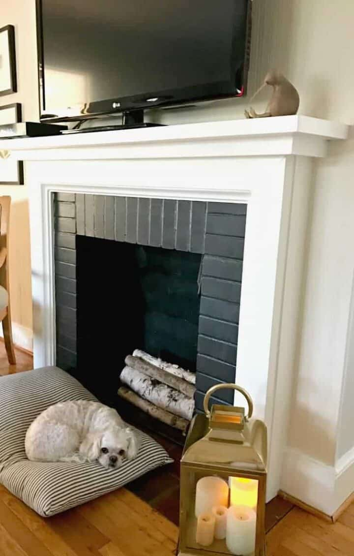 dog laying on pillow in front of fireplace