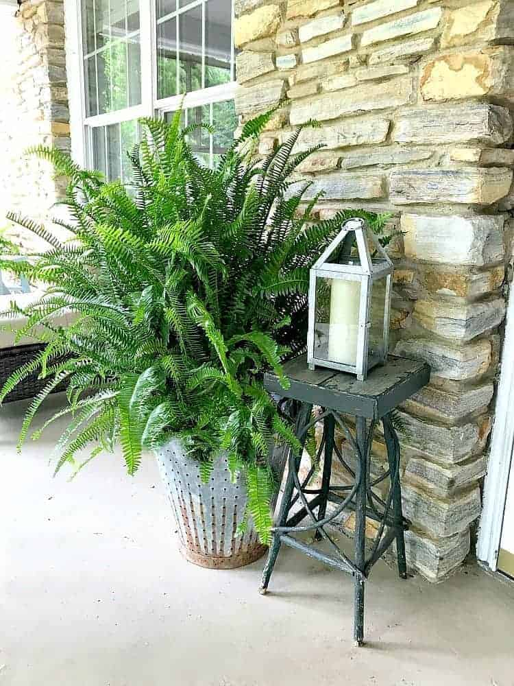 Galvanized metal is a hot trend right now. Check out how you can easily use galvanized metal buckets around your house.