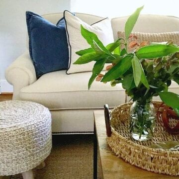 A vase of greenery on a coffee table