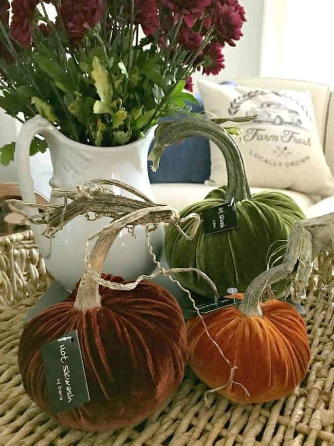 A cute fall display using mums and a trio of velvet pumpkins.