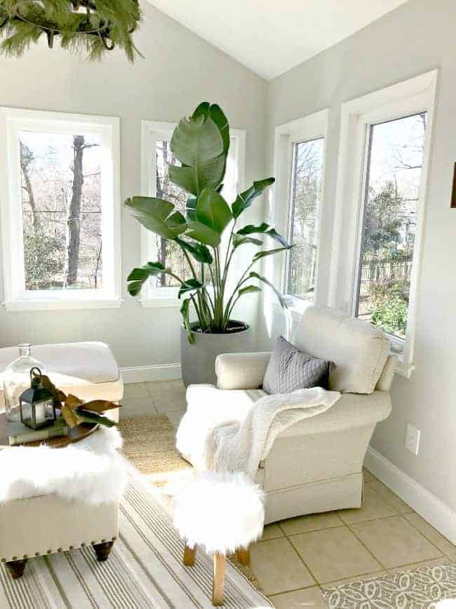 Thrifty ideas for decorating a sunroom using thrifted artwork, a broken $15 plant and paint for a plain door.