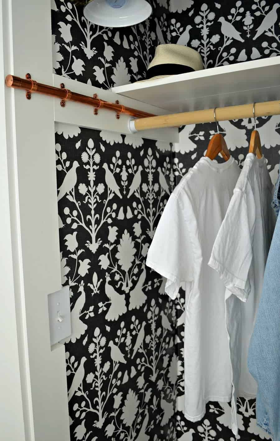 small bedroom closet with dark wallpaper and copper rod