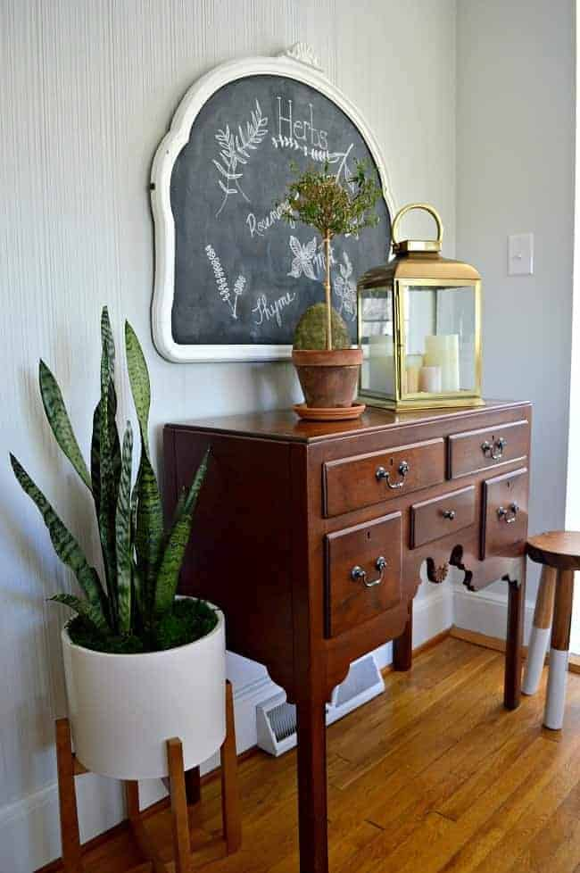 snake plant in planter next to wood cabinet with lantern on top