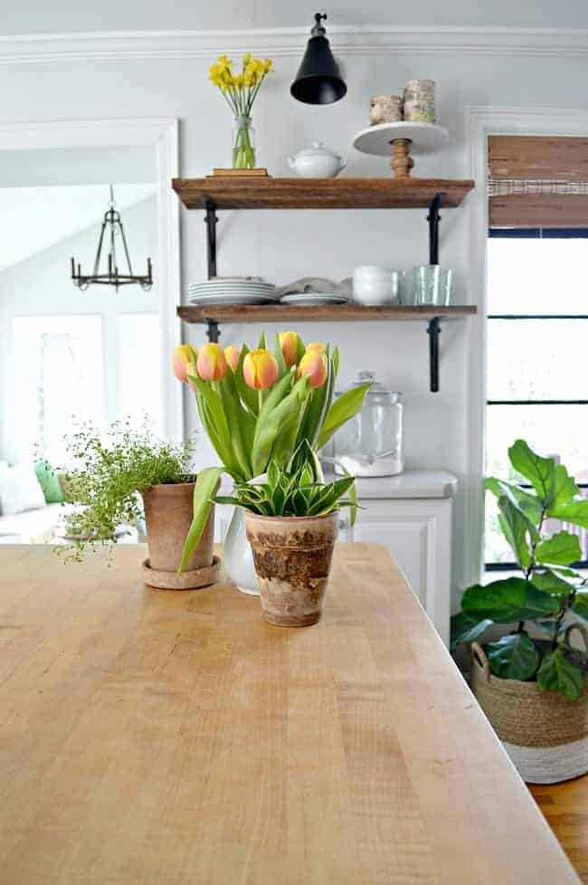 a pitcher of yellow tulips and potted plants on a butcher block kitchen island with wooden shelves in the background