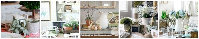 eggs, pitcher and potted plant