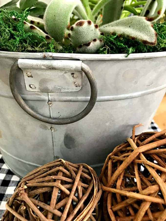 handle on DIY succulent planter