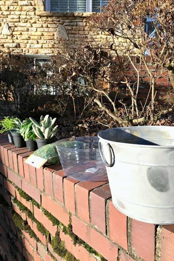 making a DIY Succulent planter with a galvanized bucket, pot liner, sheet moss and succulents