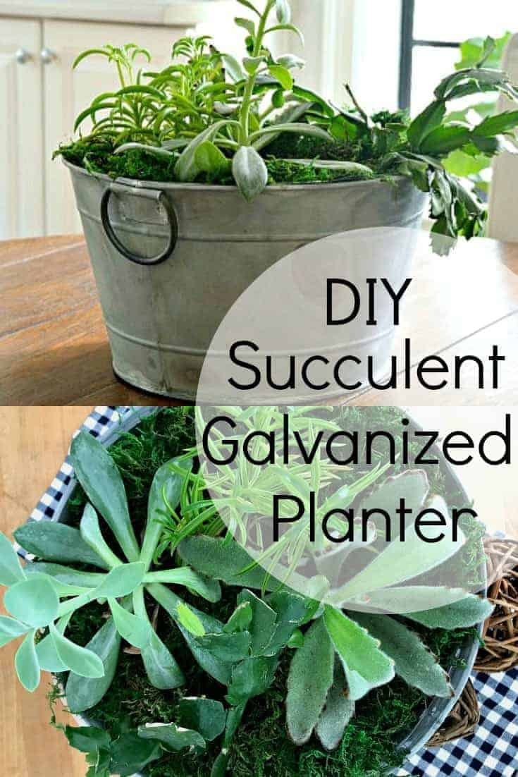 DIY succulent planter on wood table and top view of planter on table