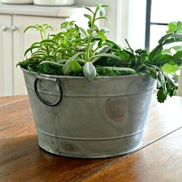 A bucket filled with plants sitting on top of a wooden table