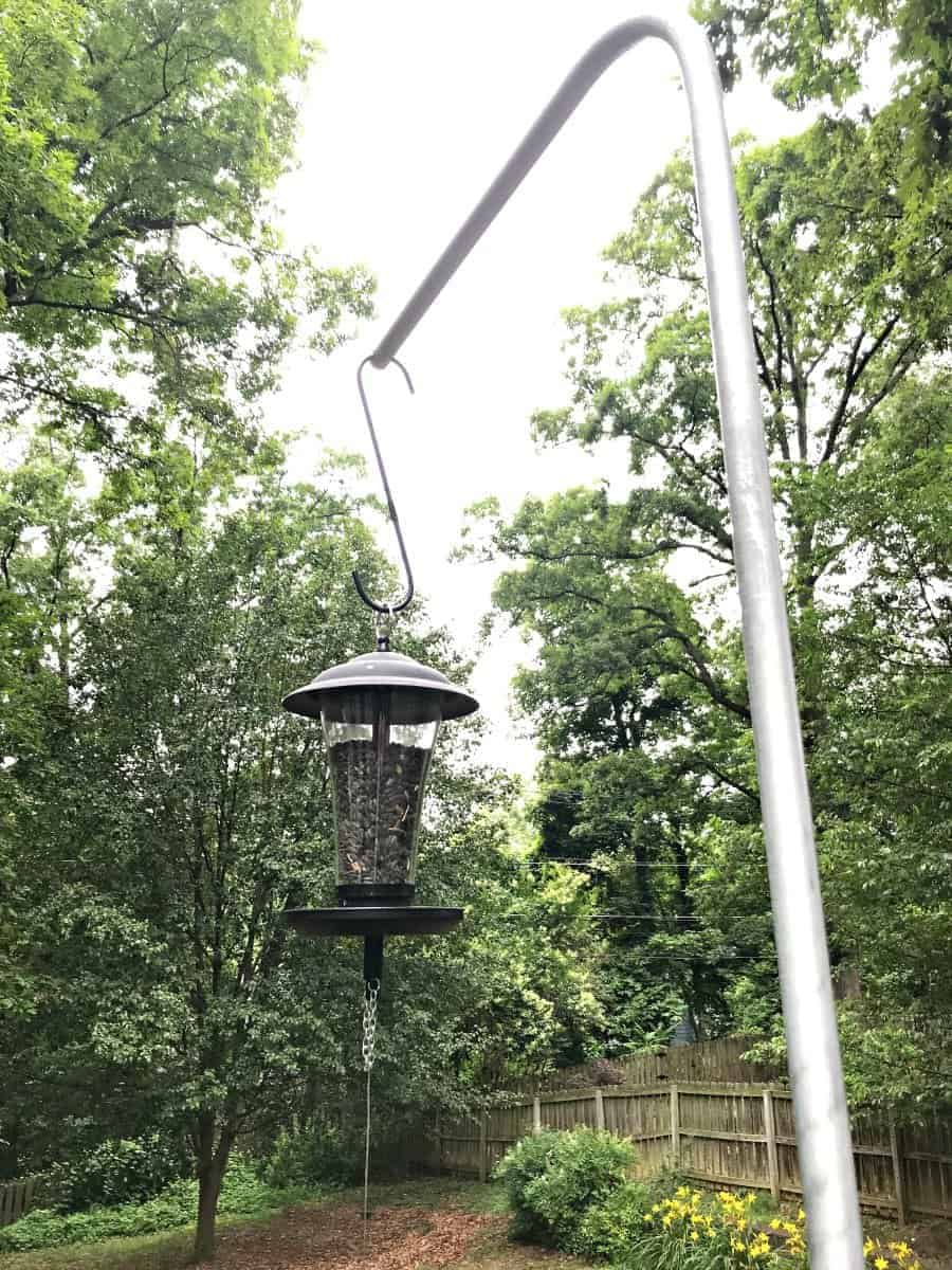 bird feeder hanging from DIY bird feeder pole