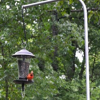 DIY Bird Feeder Pole for Under $5