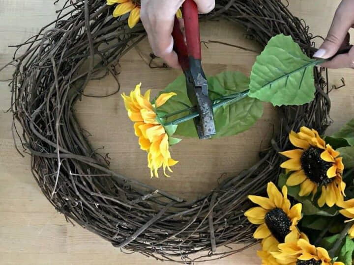 cutting sunflowers for how to make a sunflower wreath tutorial
